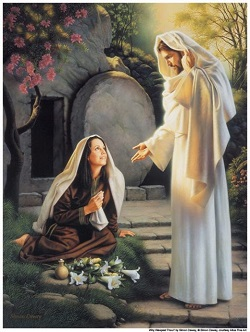 Daily Meditation: ``Mary of Magdala went and announced to the disciples, I have seen the Lord``
