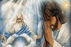 Daily Meditation: ``I praise you, Father``