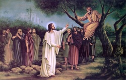 Daily Meditation: ``The Son of Man has come to seek and to save the lost``