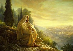 Daily Meditation: ``If only today you knew the ways of peace!``