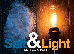 Daily Meditation: ``You are the salt of the earth. You are the light of the world``