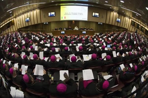 Tòa Thánh công bố các tài liệu chuẩn bị cho Thượng hội đồng Giám mục