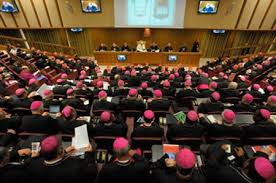Thượng Hội Đồng Giám mục về Gia Đình: giai đoạn II