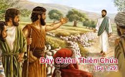 Giới thiệu và  làm chứng cho Chúa Giêsu: Suy niệm TMCN II TN (A)
