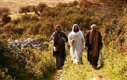 Nhận ra Chúa Giêsu Kitô phục sinh - Suy niệm TMCN III PS (A)