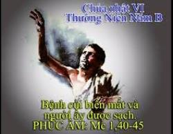 Tấm lòng của Đức Giêsu: Suy niệm TM CN VI TN (B)