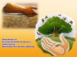 Bài ca của người đi gieo hạt