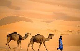 Dòng nước từ sa mạc