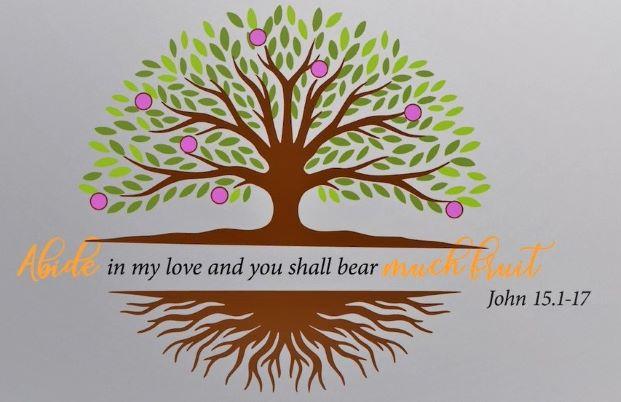 Tuần lễ cầu nguyện cho các Kitô hữu hợp nhất (18-25/1/2021)