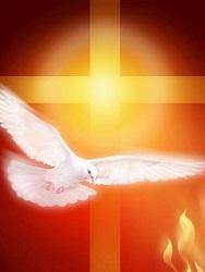 Các mối Phúc thật hôm nay (19): Các linh hoạt của hôm nay