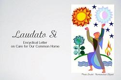 Chương trình Tuần lễ kết thúc Năm Laudato Si'