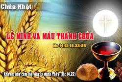 Học hỏi Tin Mừng Lễ Mình Máu Chúa Kitô (B)