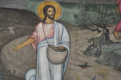 Liturgical day: Wednesday 16th in Ordinary Time