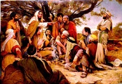 Liturgical day: Thursday 16th in Ordinary Time
