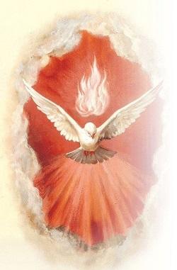 Chúa Thánh Thần ban cho chúng ta can đảm, hy vọng và đức tin