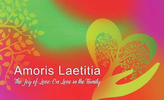 Tĩnh tâm với ``Niềm vui của Tình yêu`` Amoris Laetitia