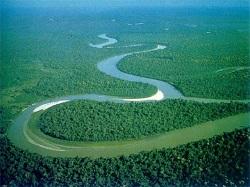 Dòng Sông Chảy Về Đâu? (Giải Viết Văn Đường Trường 2017)
