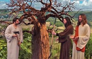 Cây vả và người làm vườn nhân hậu