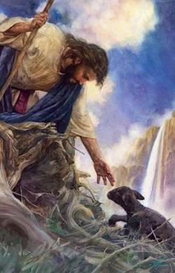 Thiên Chúa yêu thương người trẻ