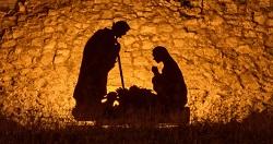 Vào máng cỏ học khiêm nhường