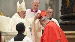 Giáo hội có 13 tân Hồng y - Phẩm phục Hồng y màu đỏ có nghĩa gì?