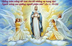 Liturgical day: August 15th: Assumption of the Blessed Virgin Mary