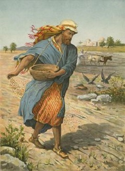 Liturgical day: Friday 16th in Ordinary Time