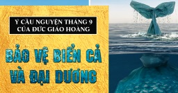 Ý cầu nguyện tháng 9/2019: Cầu cho việc bảo vệ đại dương
